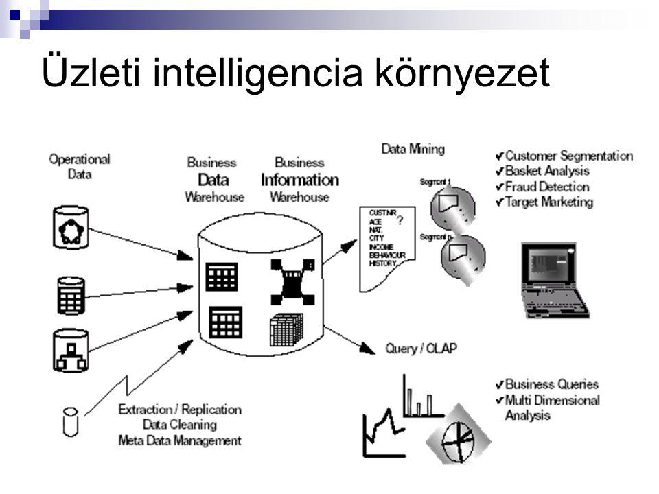 Üzleti intelligencia környezet