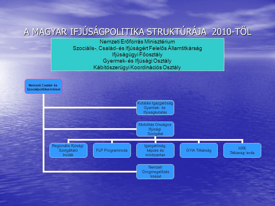 A MAGYAR IFJÚSÁGPOLITIKA STRUKTÚRÁJA 2010-TŐL