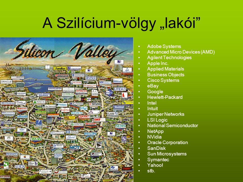 """A Szilícium-völgy """"lakói"""