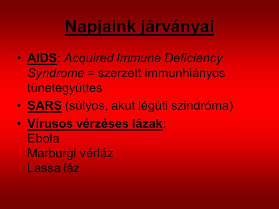 Napjaink járványai AIDS: Acquired Immune Deficiency Syndrome = szerzett immunhiányos tünetegyüttes.