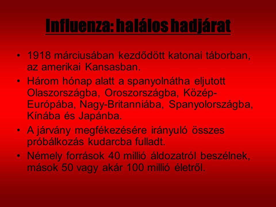 Influenza: halálos hadjárat