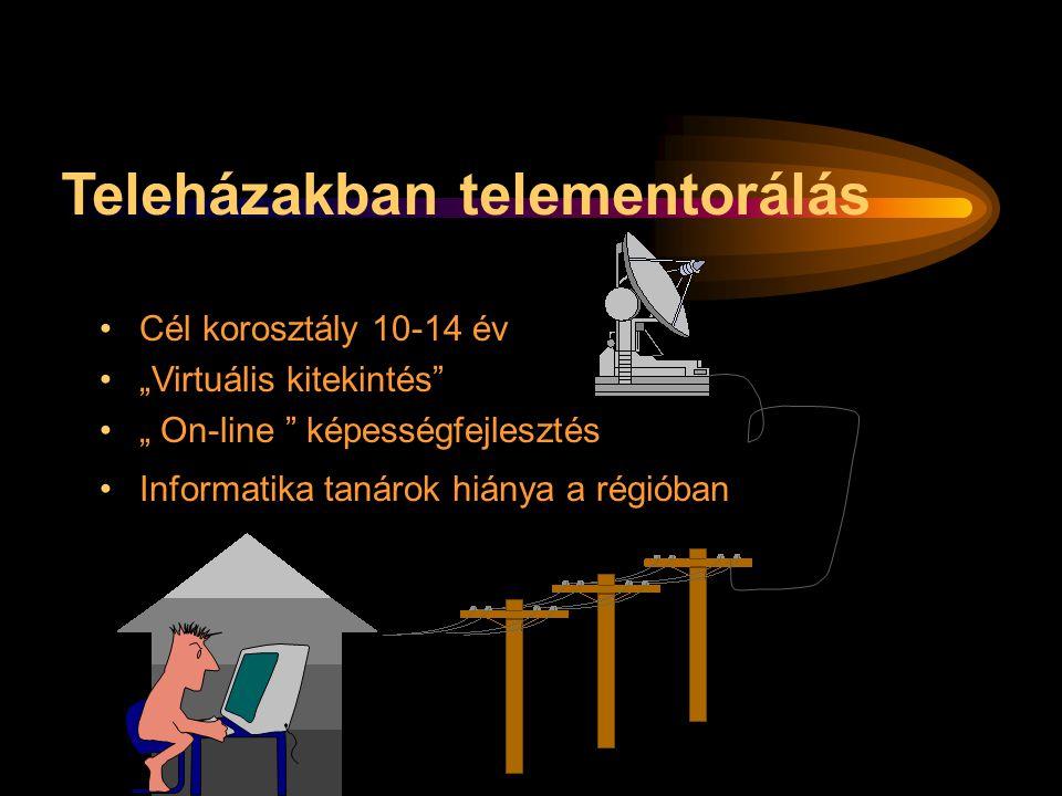 Teleházakban telementorálás