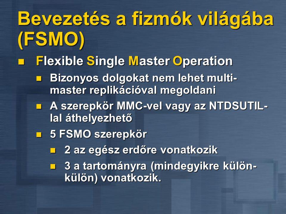 Bevezetés a fizmók világába (FSMO)