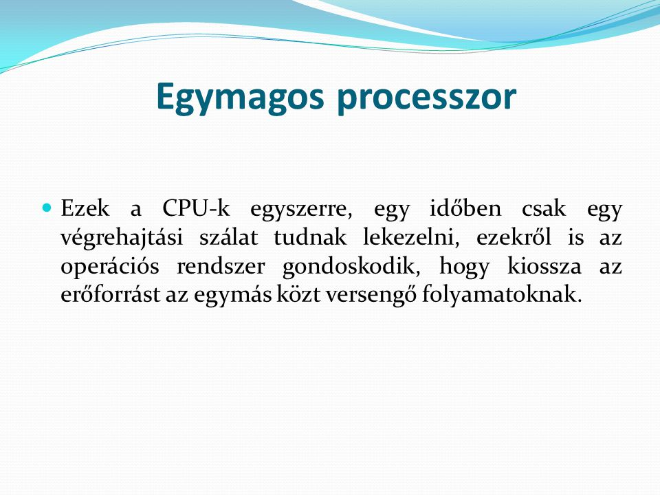 Egymagos processzor