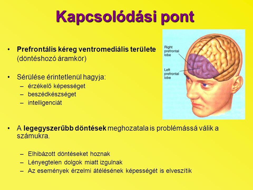 Kapcsolódási pont Prefrontális kéreg ventromediális területe
