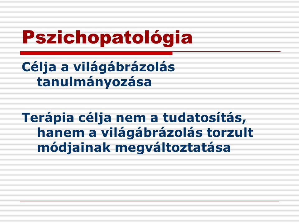 Pszichopatológia Célja a világábrázolás tanulmányozása