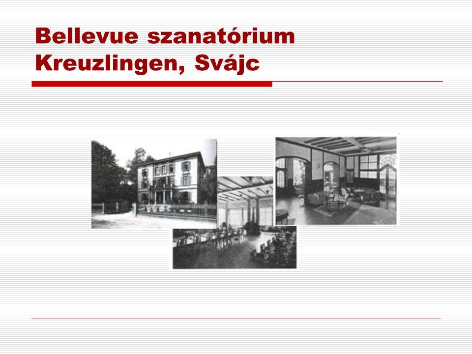 Bellevue szanatórium Kreuzlingen, Svájc