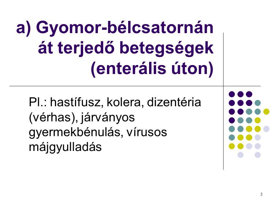 a) Gyomor-bélcsatornán át terjedő betegségek (enterális úton)