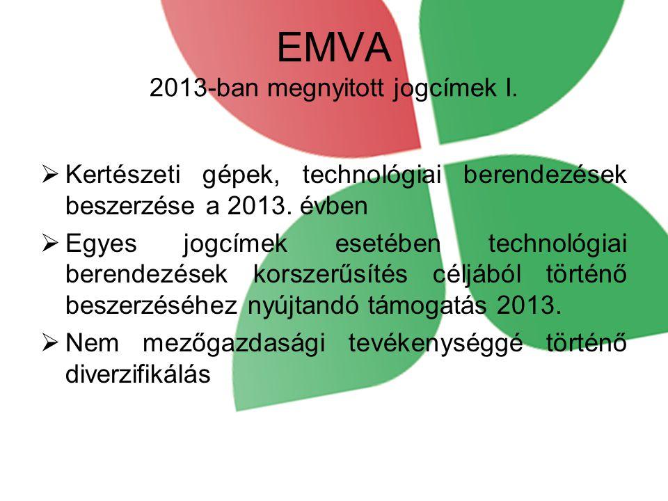 EMVA 2013-ban megnyitott jogcímek I.