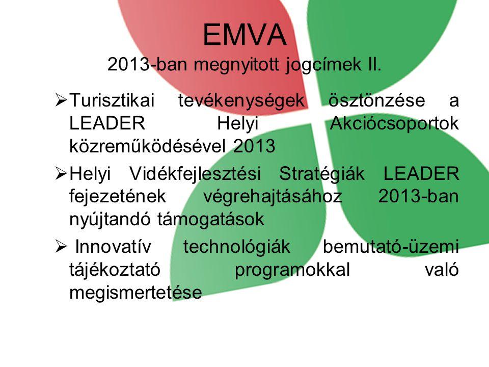 EMVA 2013-ban megnyitott jogcímek II.
