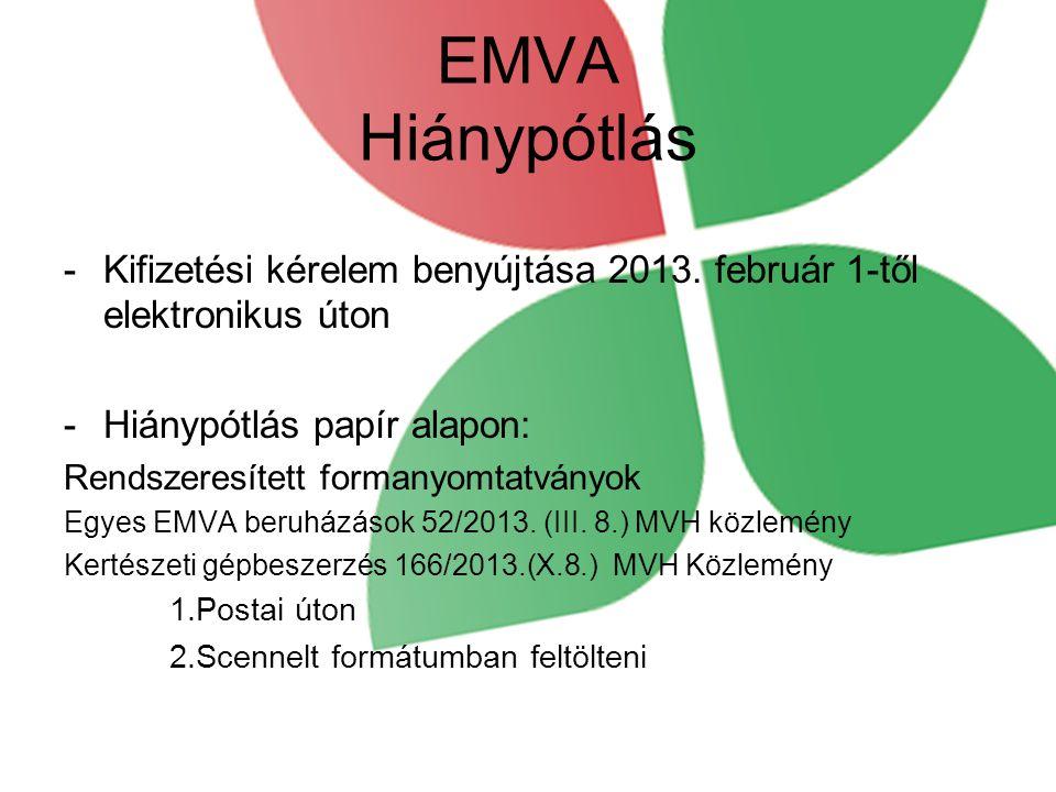 EMVA Hiánypótlás Kifizetési kérelem benyújtása 2013. február 1-től elektronikus úton. Hiánypótlás papír alapon: