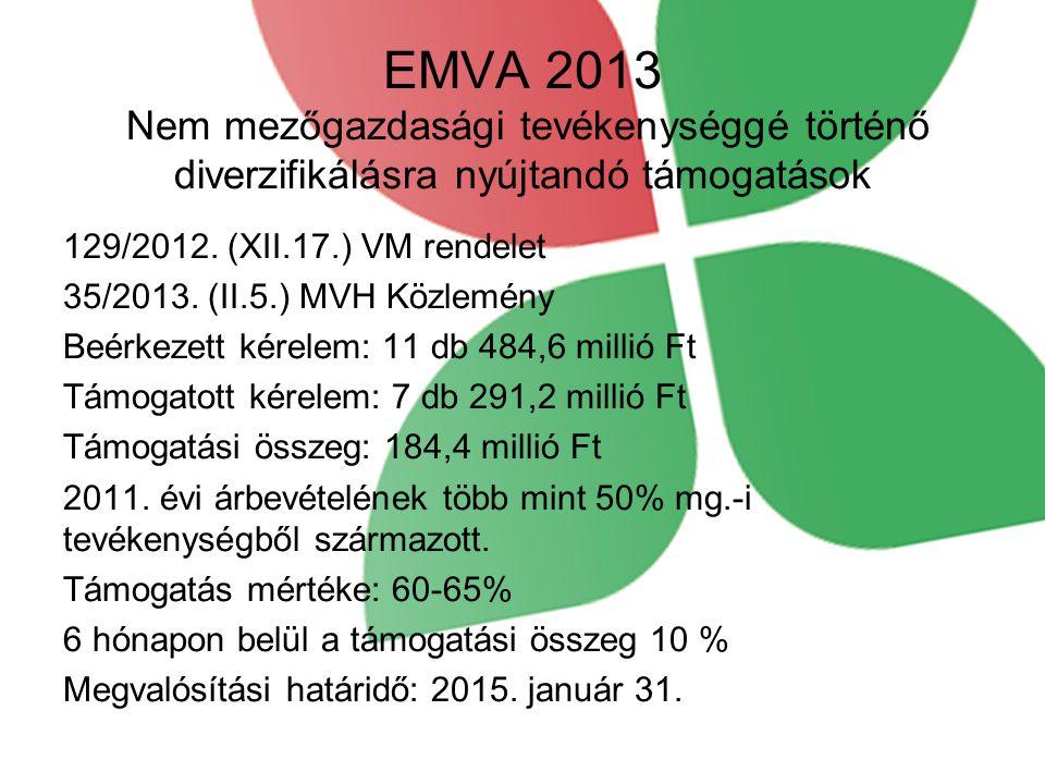 EMVA 2013 Nem mezőgazdasági tevékenységgé történő diverzifikálásra nyújtandó támogatások