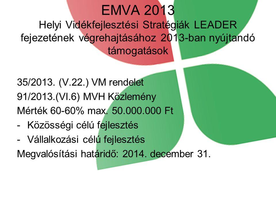 EMVA 2013 Helyi Vidékfejlesztési Stratégiák LEADER fejezetének végrehajtásához 2013-ban nyújtandó támogatások