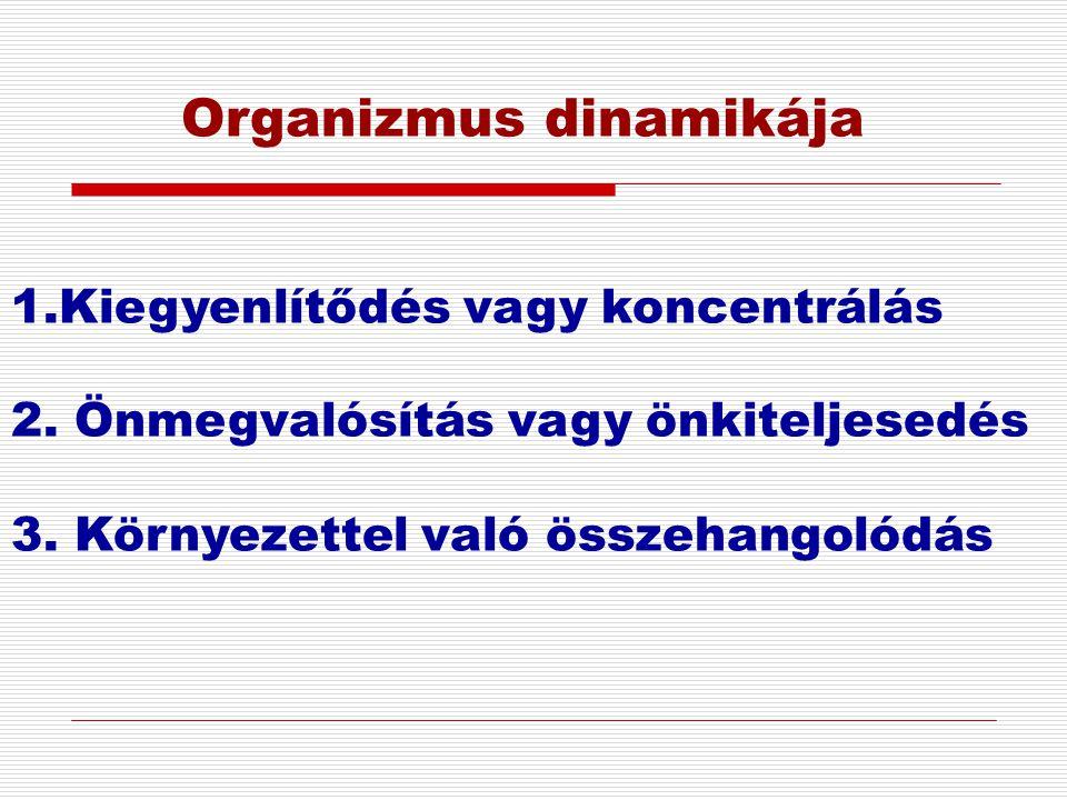 Organizmus dinamikája