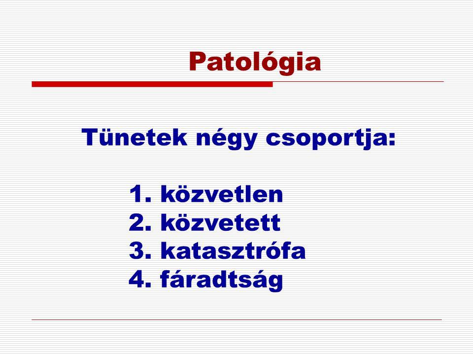 Patológia Tünetek négy csoportja: 1. közvetlen 2. közvetett