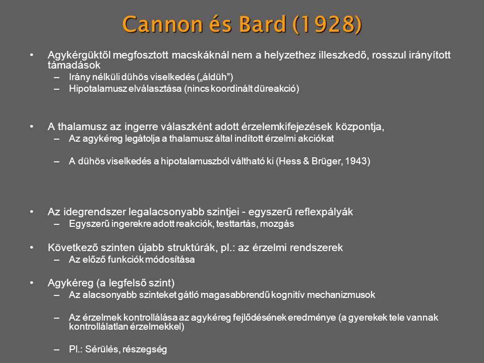 Cannon és Bard (1928) Agykérgüktől megfosztott macskáknál nem a helyzethez illeszkedő, rosszul irányított támadások.