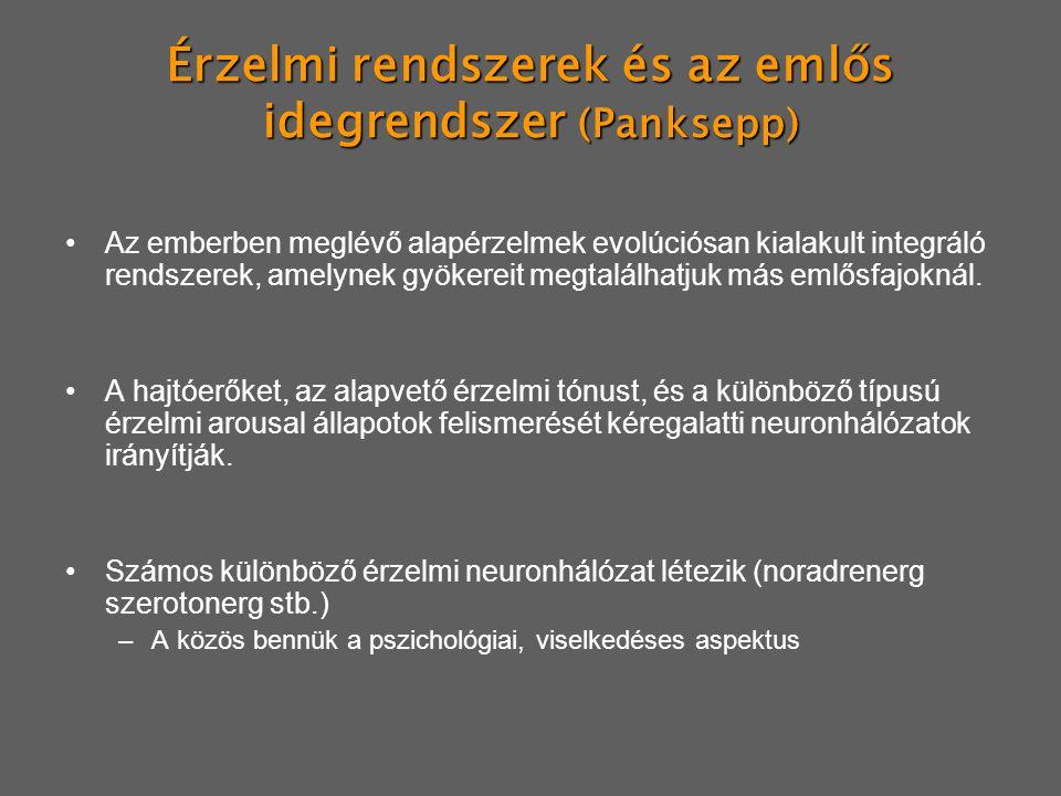 Érzelmi rendszerek és az emlős idegrendszer (Panksepp)