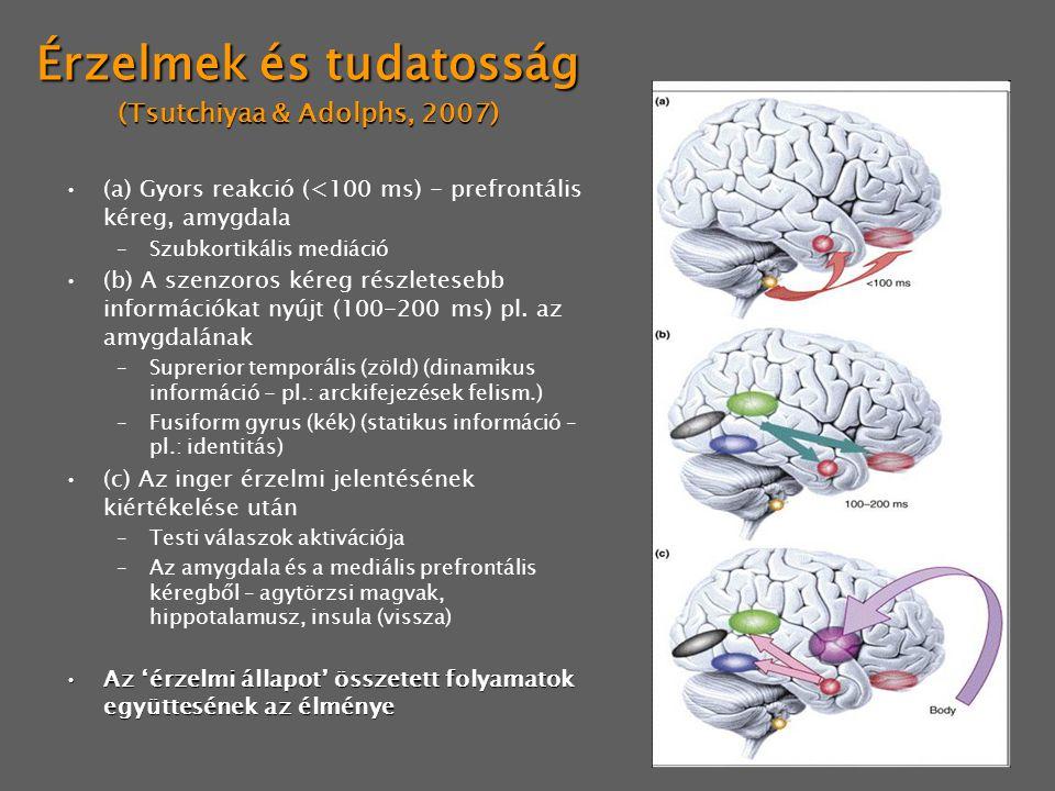 Érzelmek és tudatosság (Tsutchiyaa & Adolphs, 2007)
