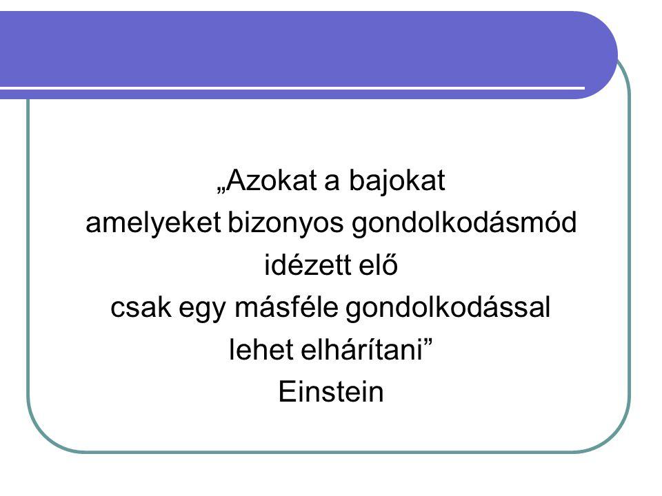 """""""Azokat a bajokat amelyeket bizonyos gondolkodásmód idézett elő csak egy másféle gondolkodással lehet elhárítani Einstein"""