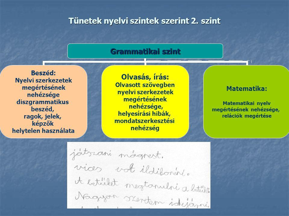 Tünetek nyelvi szintek szerint 2. szint