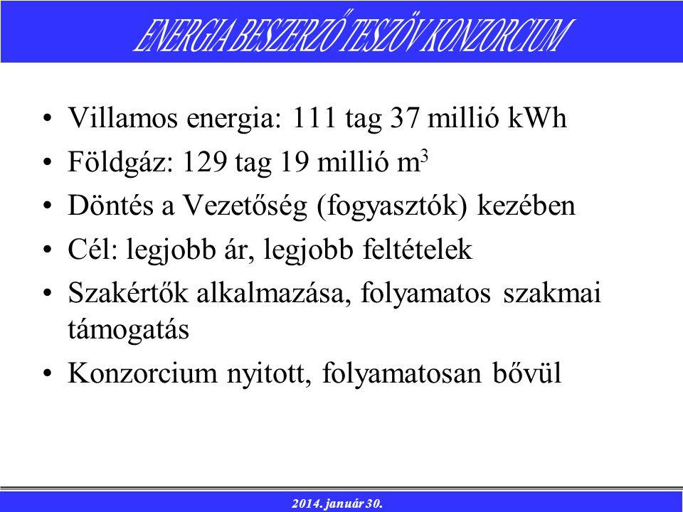 Villamos energia: 111 tag 37 millió kWh