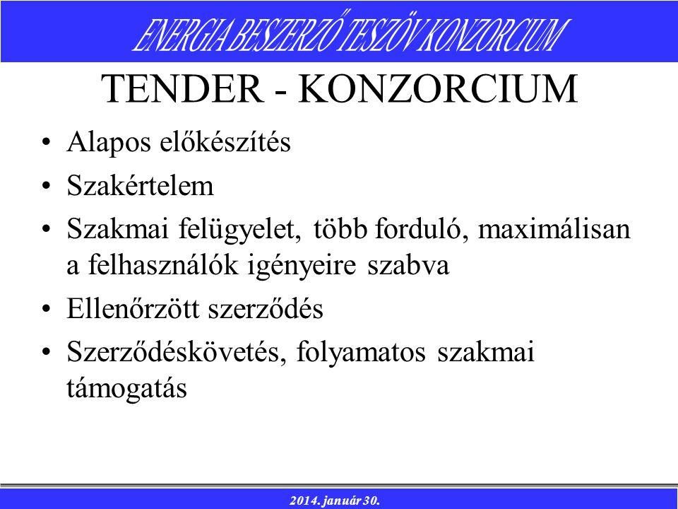 TENDER - KONZORCIUM Alapos előkészítés Szakértelem