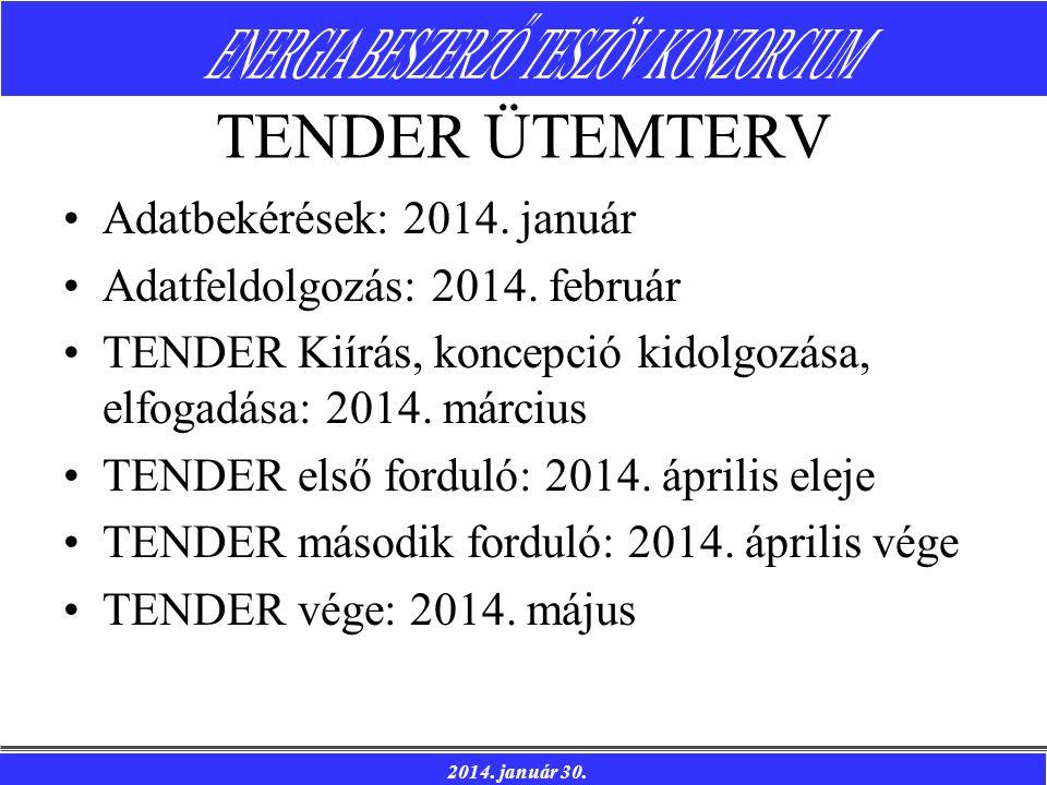TENDER ÜTEMTERV Adatbekérések: 2014. január
