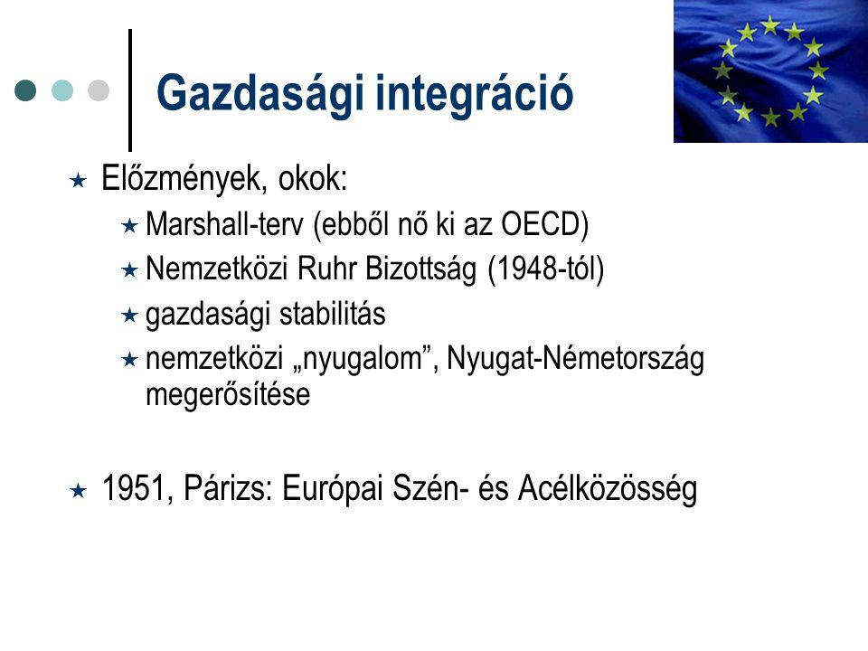 Gazdasági integráció Előzmények, okok: