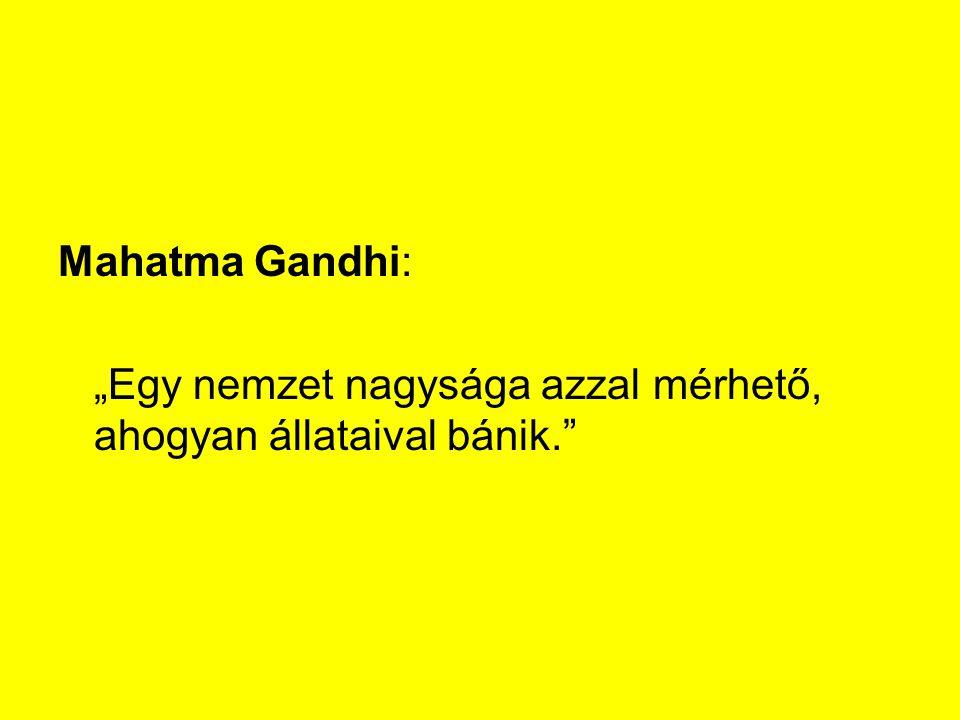 """Mahatma Gandhi: """"Egy nemzet nagysága azzal mérhető, ahogyan állataival bánik."""