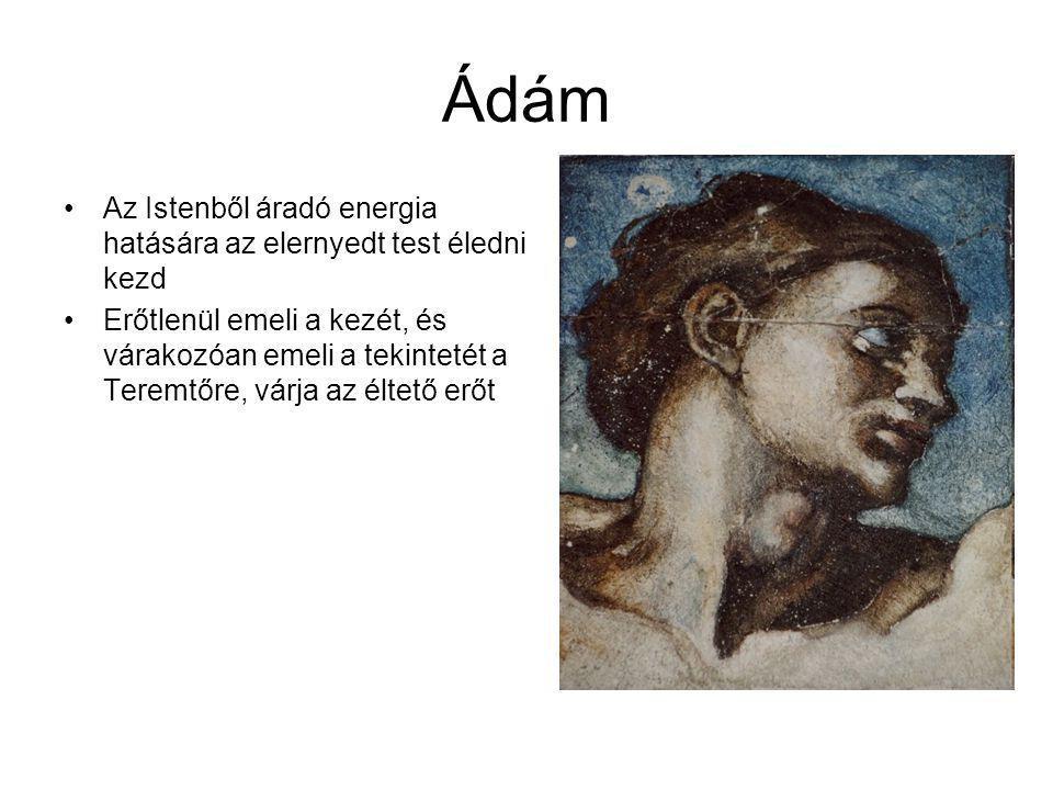 Ádám Az Istenből áradó energia hatására az elernyedt test éledni kezd