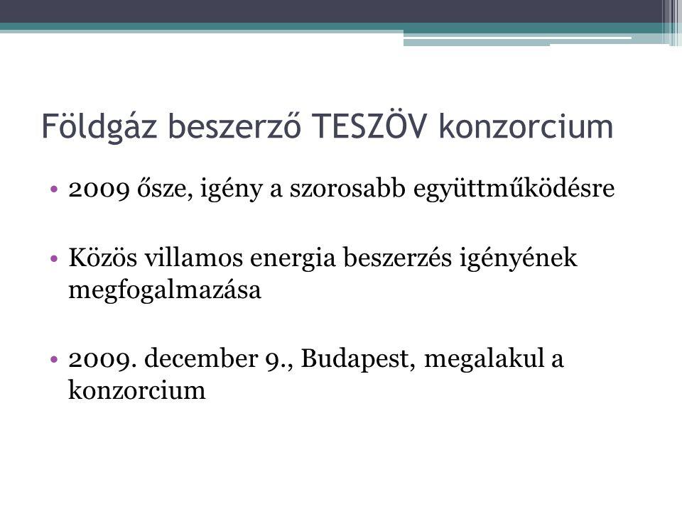 Földgáz beszerző TESZÖV konzorcium