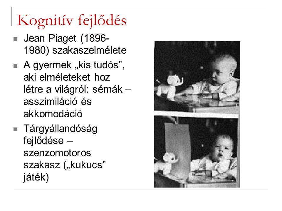 Kognitív fejlődés Jean Piaget (1896-1980) szakaszelmélete