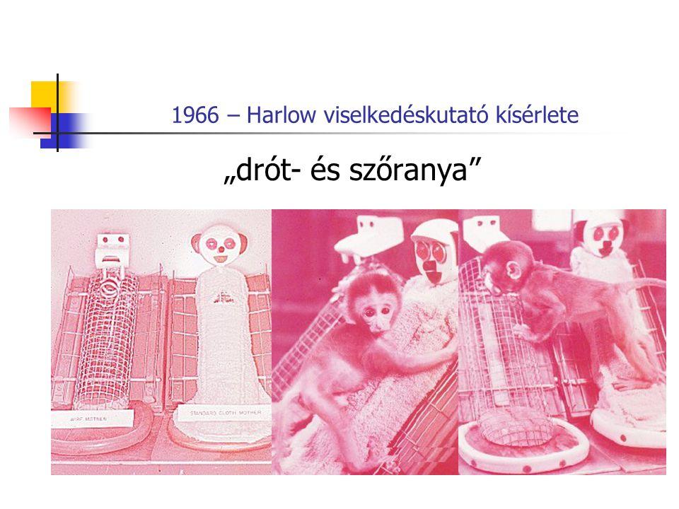 1966 – Harlow viselkedéskutató kísérlete
