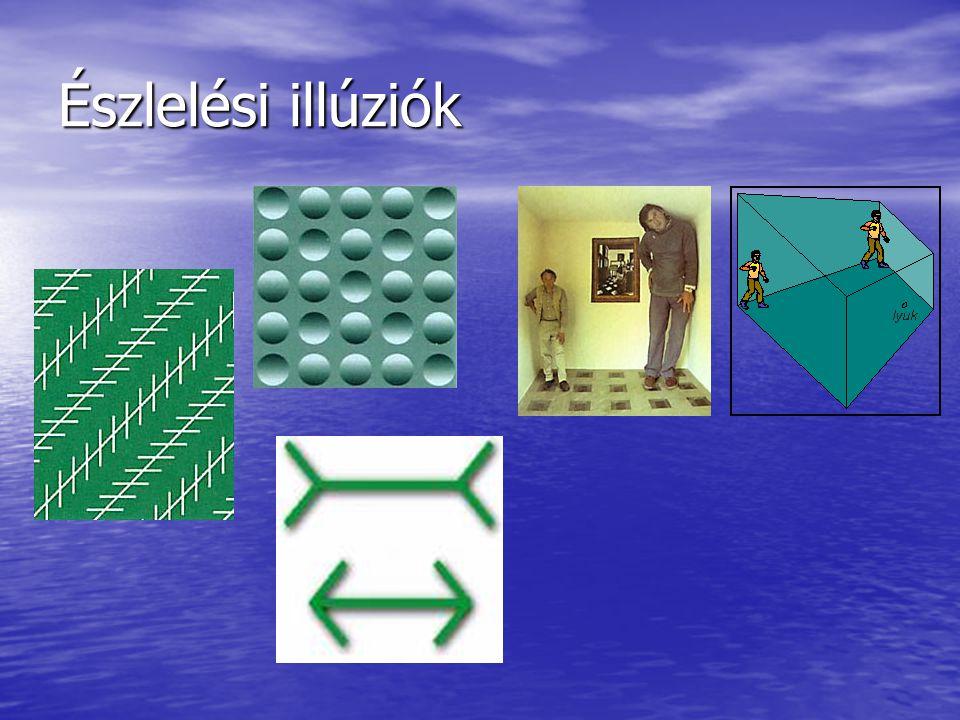 Észlelési illúziók