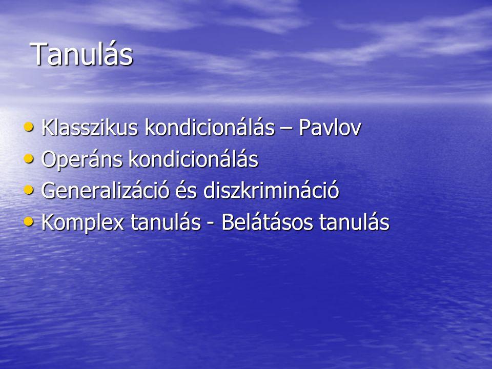 Tanulás Klasszikus kondicionálás – Pavlov Operáns kondicionálás