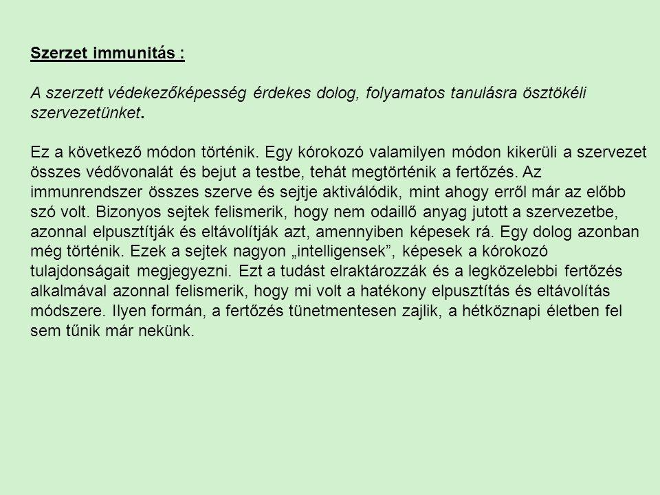 Szerzet immunitás :