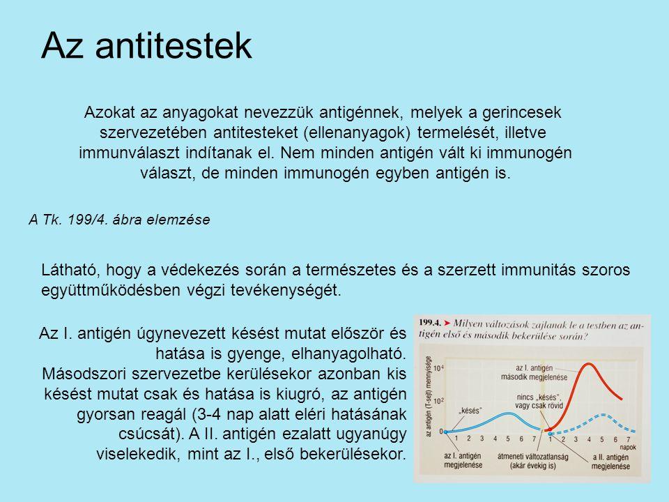 Az antitestek Azokat az anyagokat nevezzük antigénnek, melyek a gerincesek. szervezetében antitesteket (ellenanyagok) termelését, illetve.