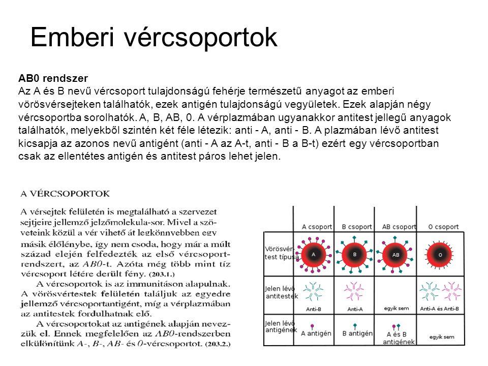 Emberi vércsoportok AB0 rendszer