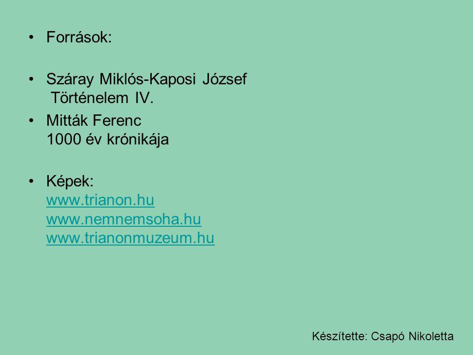 Száray Miklós-Kaposi József Történelem IV.