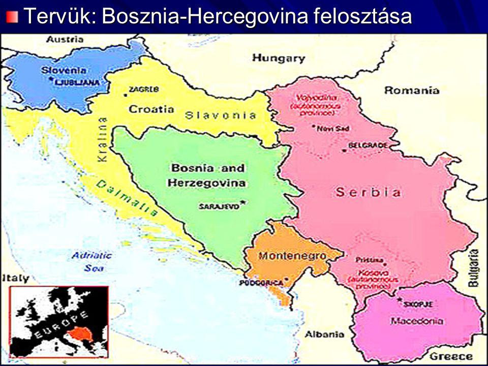 Tervük: Bosznia-Hercegovina felosztása