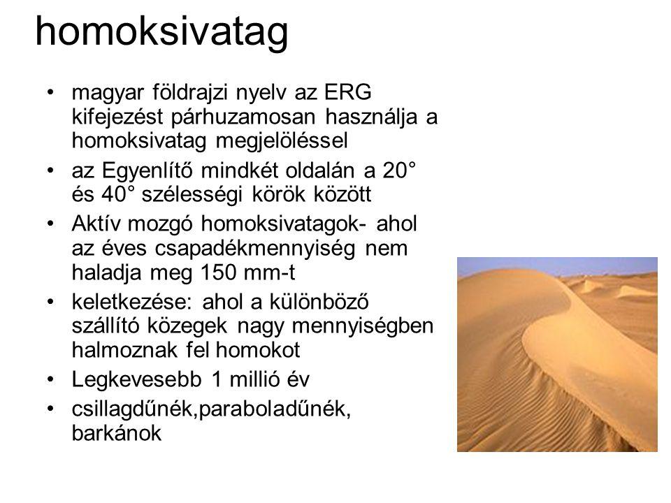 homoksivatag magyar földrajzi nyelv az ERG kifejezést párhuzamosan használja a homoksivatag megjelöléssel.