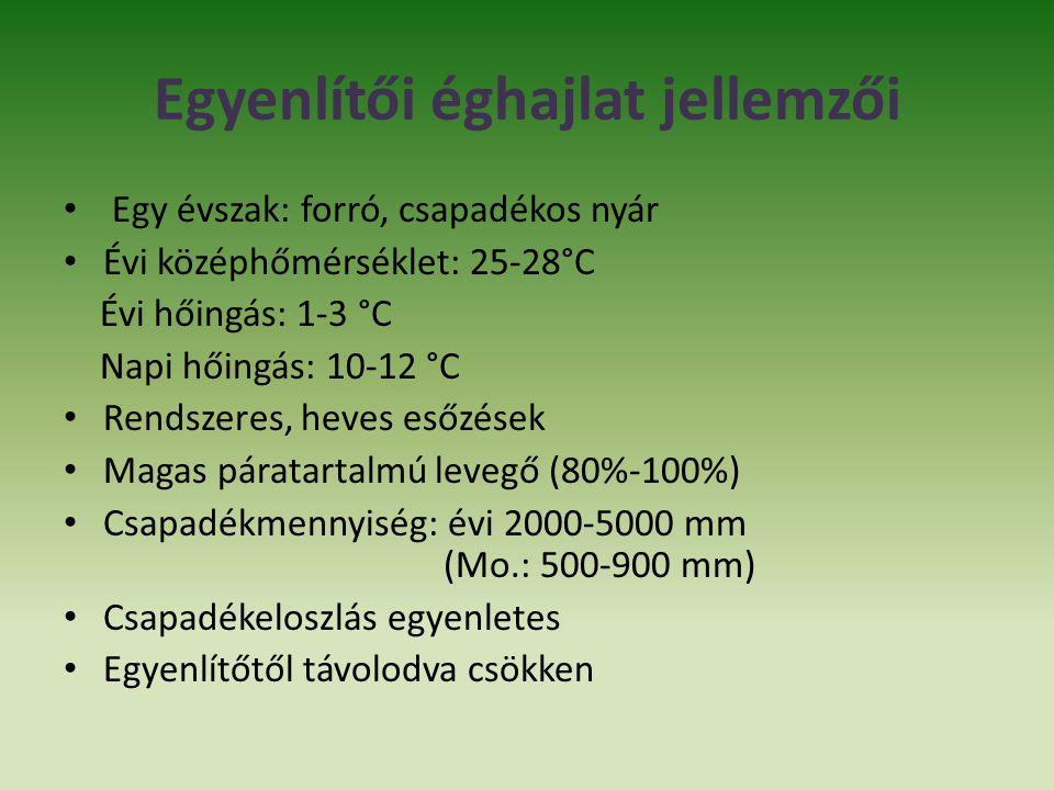 Egyenlítői éghajlat jellemzői