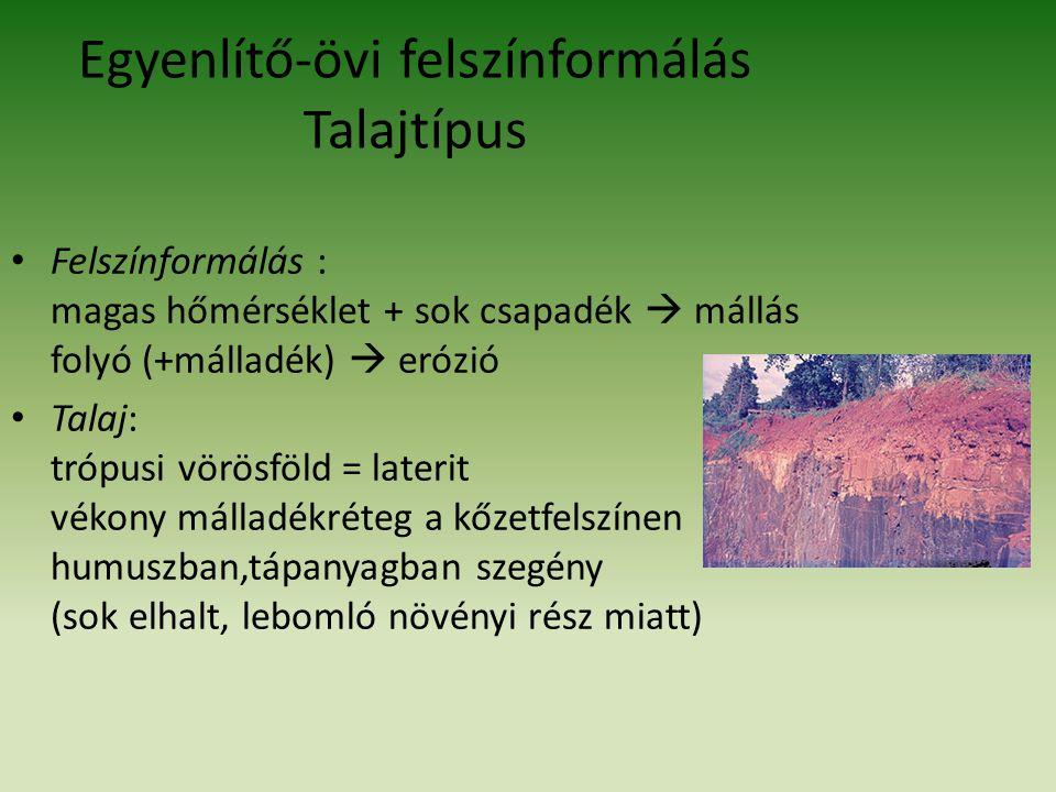 Egyenlítő-övi felszínformálás Talajtípus
