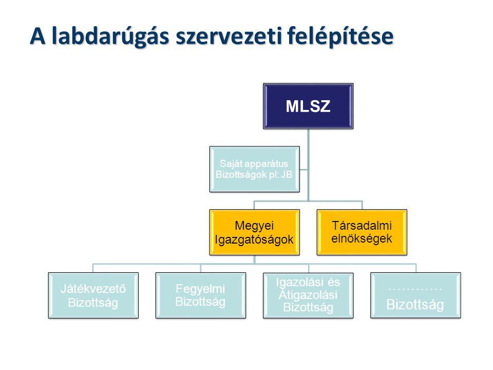 A labdarúgás szervezeti felépítése