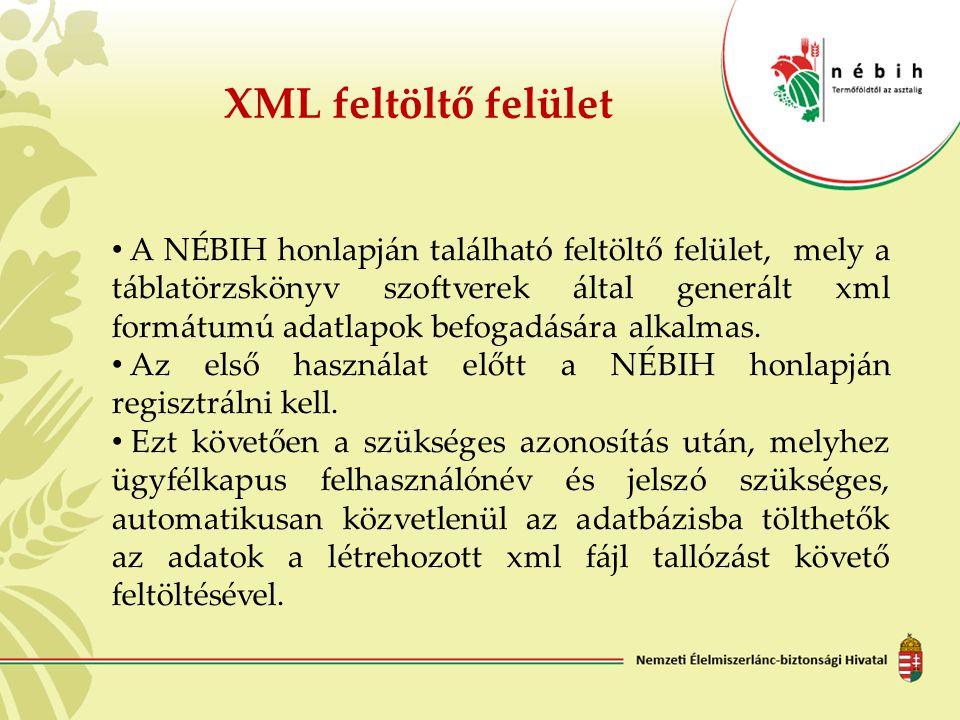 XML feltöltő felület