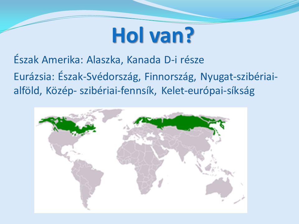 Hol van Észak Amerika: Alaszka, Kanada D-i része