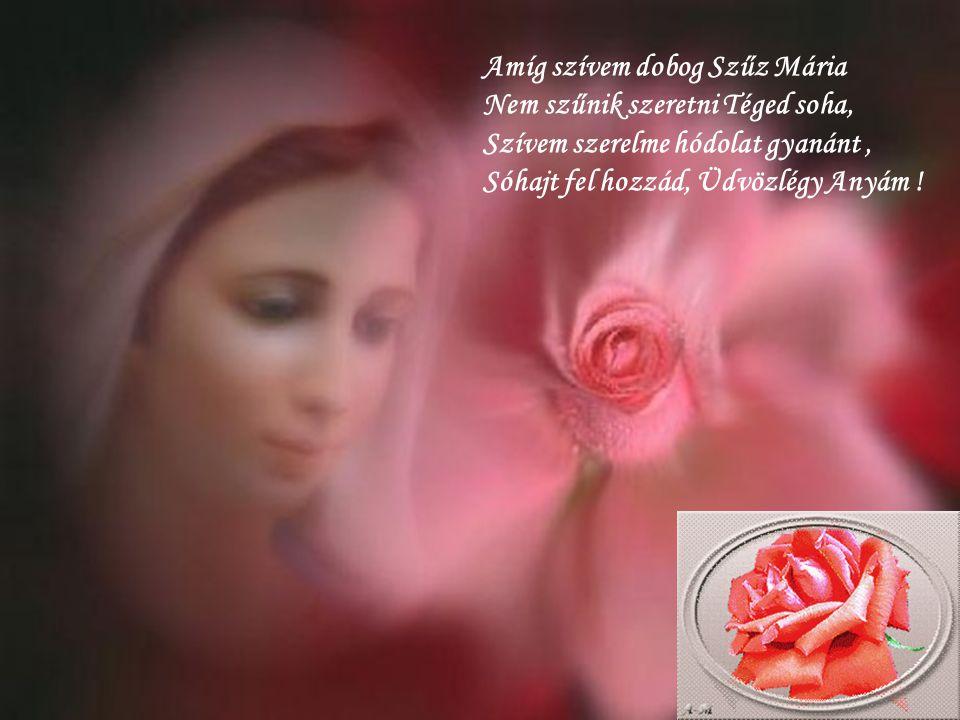 Amíg szívem dobog Szűz Mária Nem szűnik szeretni Téged soha, Szívem szerelme hódolat gyanánt , Sóhajt fel hozzád, Üdvözlégy Anyám !