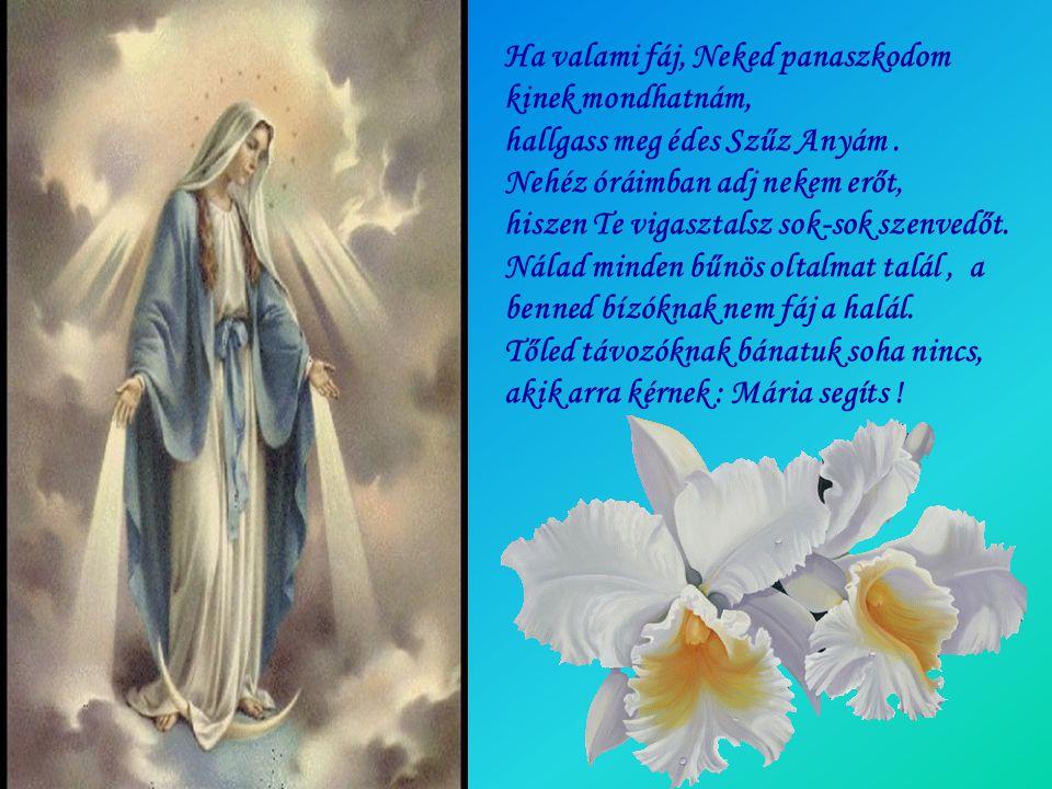 Ha valami fáj, Neked panaszkodom kinek mondhatnám, hallgass meg édes Szűz Anyám .