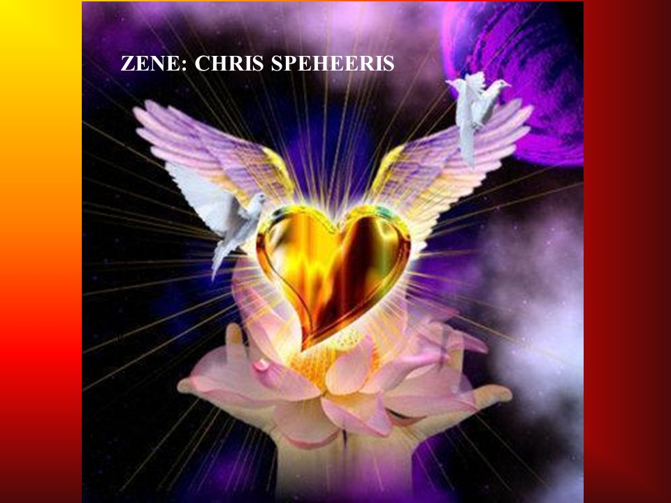 ZENE: CHRIS SPEHEERIS