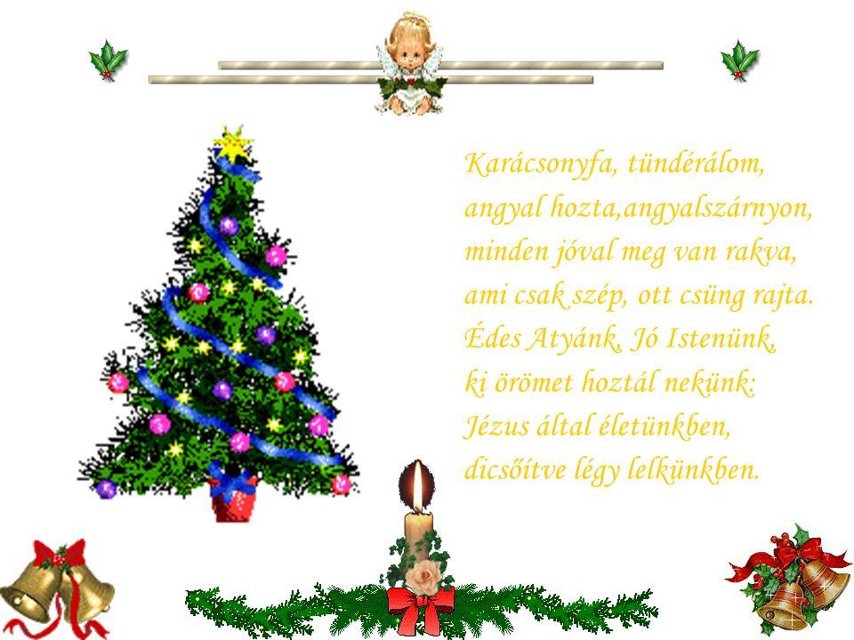 Karácsonyfa, tündérálom,